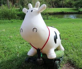 Mooomba - the Cow Roomba