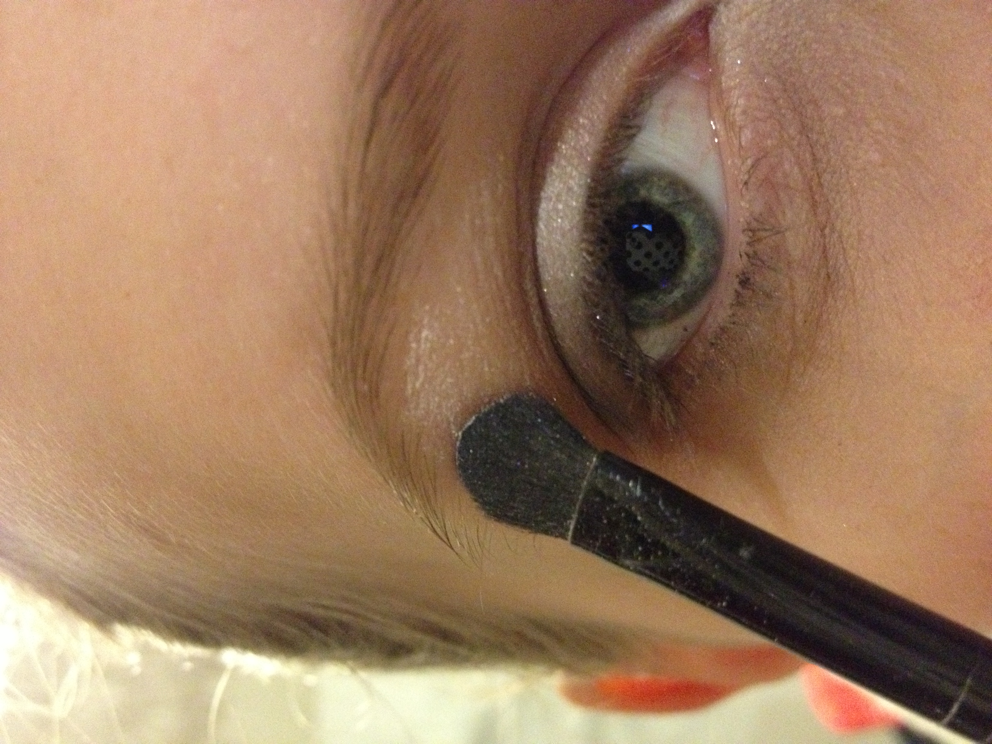 Picture of Highlighting the Browbone