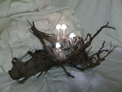 Luminous Mushroom Night Light