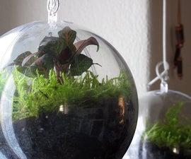 A garden inside a ball - Christmas time