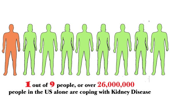 7 Steps to Living Healthier With Kidney Disease