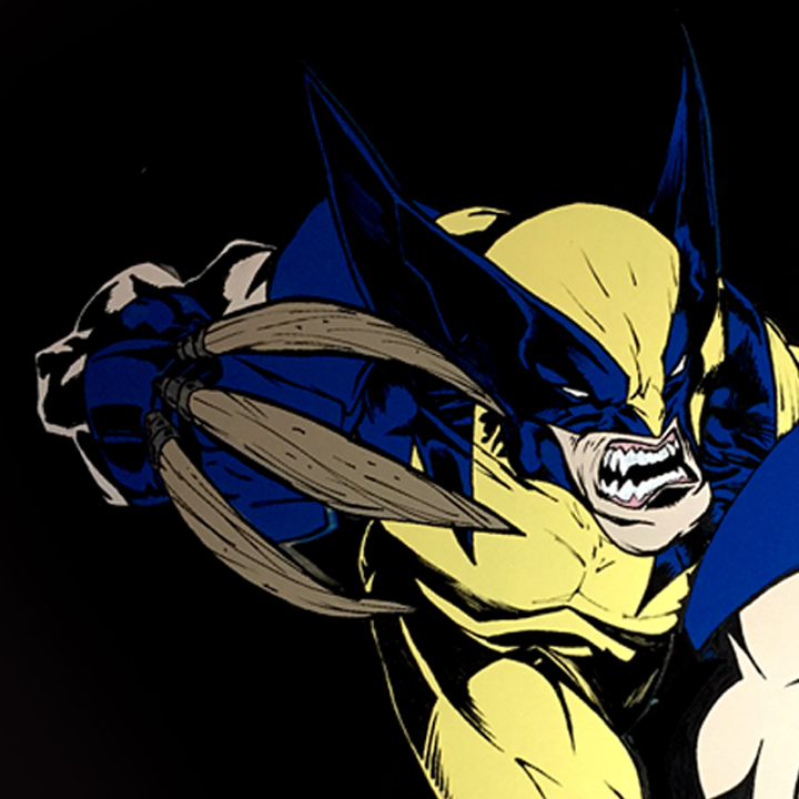 Picture of Wolverine Wall Art || MDF
