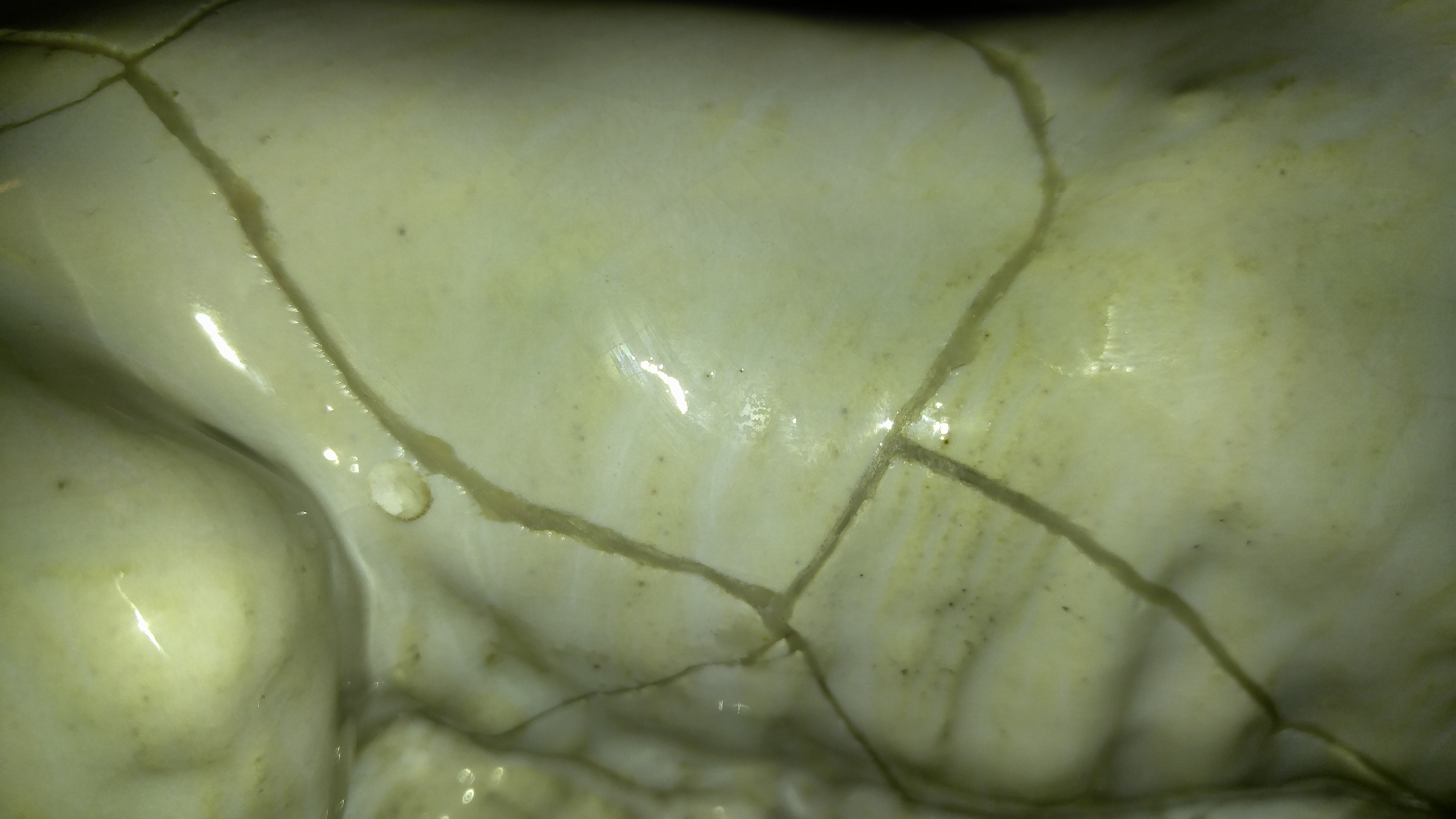 Picture of Filling the Cracks