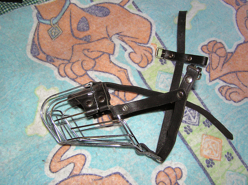 Picture of Wire Basket Muzzle