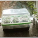 DIY humidity dome for seedlings