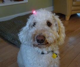 Turn Your Dog into a Cyborg!