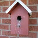 Birdhouse Maintenance