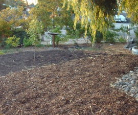 Drought Tolerant Front Yard - Converting Lawn to Soil
