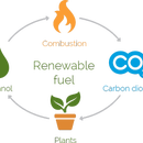 How to make bio-ethanol from regular sugar.