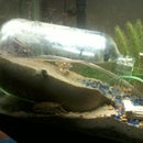Under water greenhouse