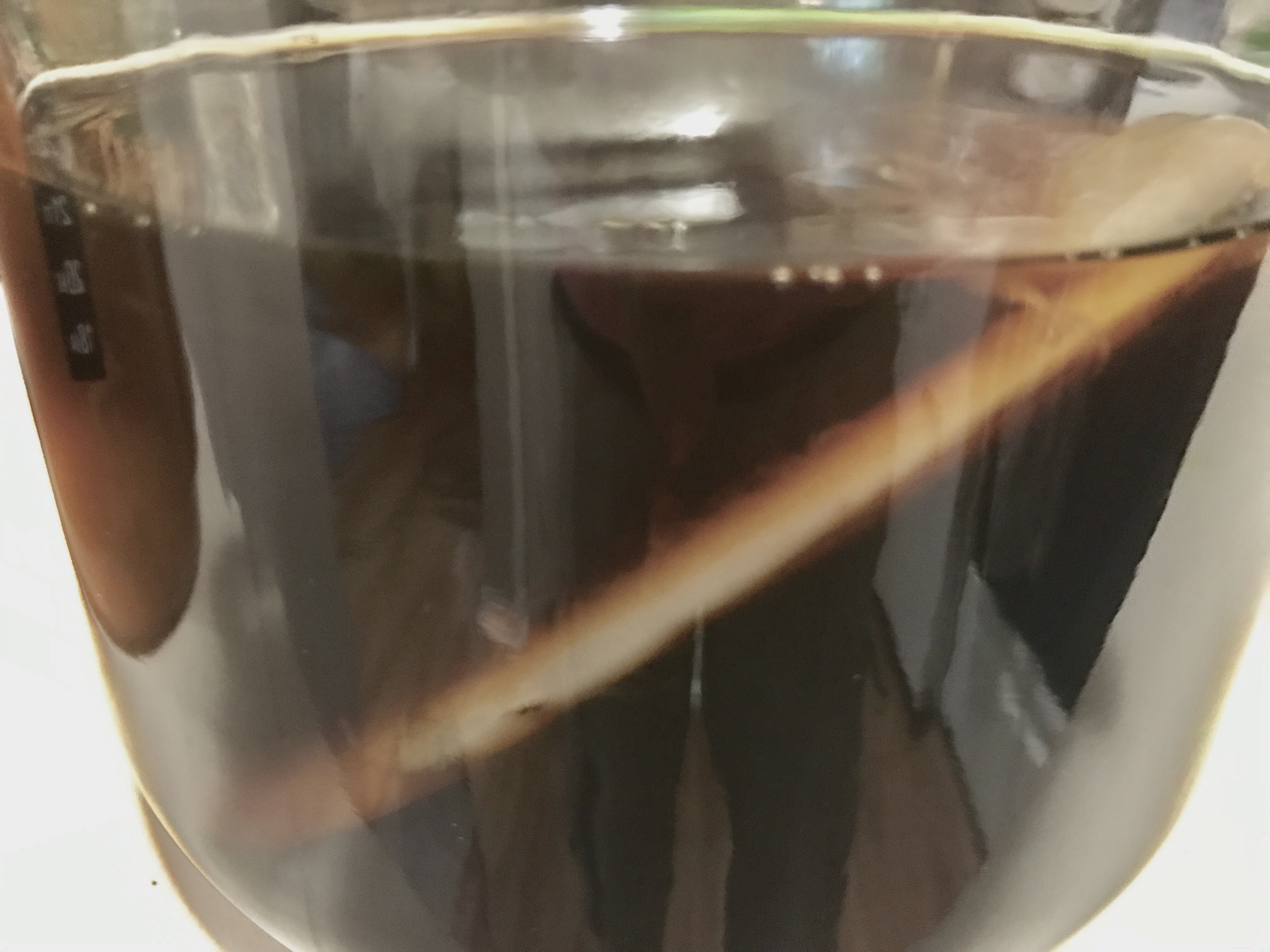 Picture of Kombucha for Beginners