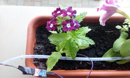 Solar Watering System Without Battery