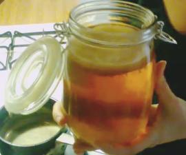Make Your Own Kombucha At Home