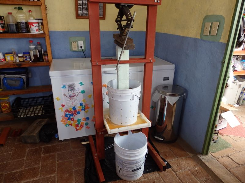 Picture of Cider From Scratch