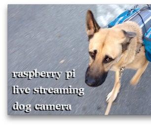 Dog Wearables (Live Streaming Dog Camera)