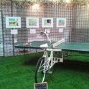 Ping Pong Bicycle