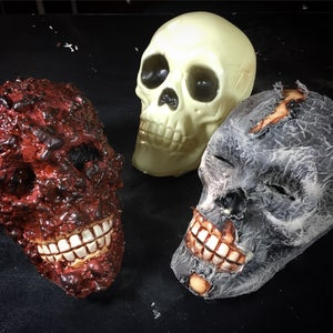 Staining and Finishing the Skull