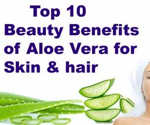 Top 10 Beauty Benefits of Aloe Vera for Skin & Hair