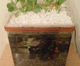 Small Aquaponic Unit