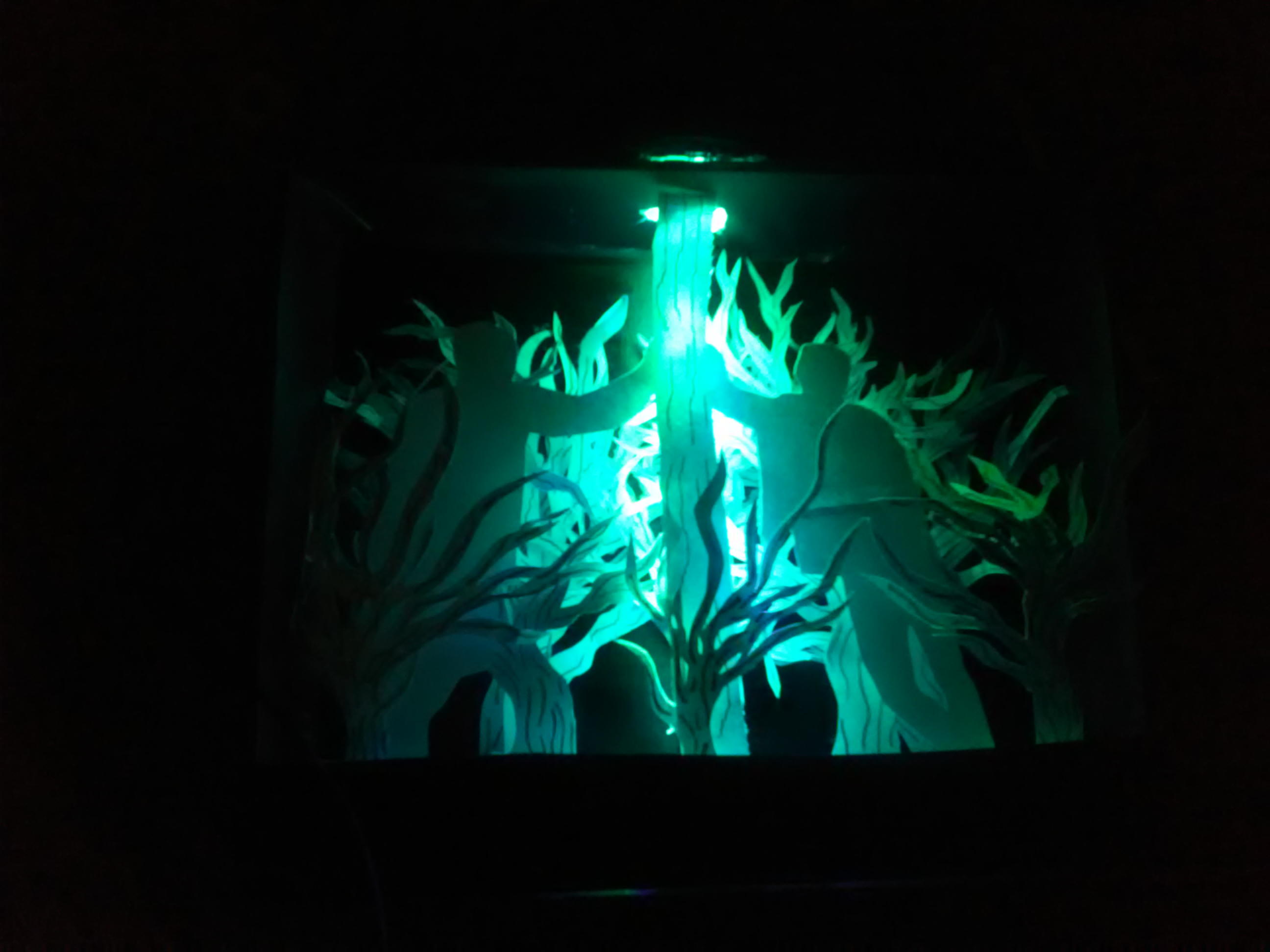 Picture of Light Shadow Box