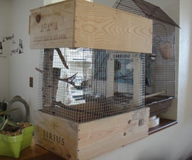 Wine-Box Bird Cage