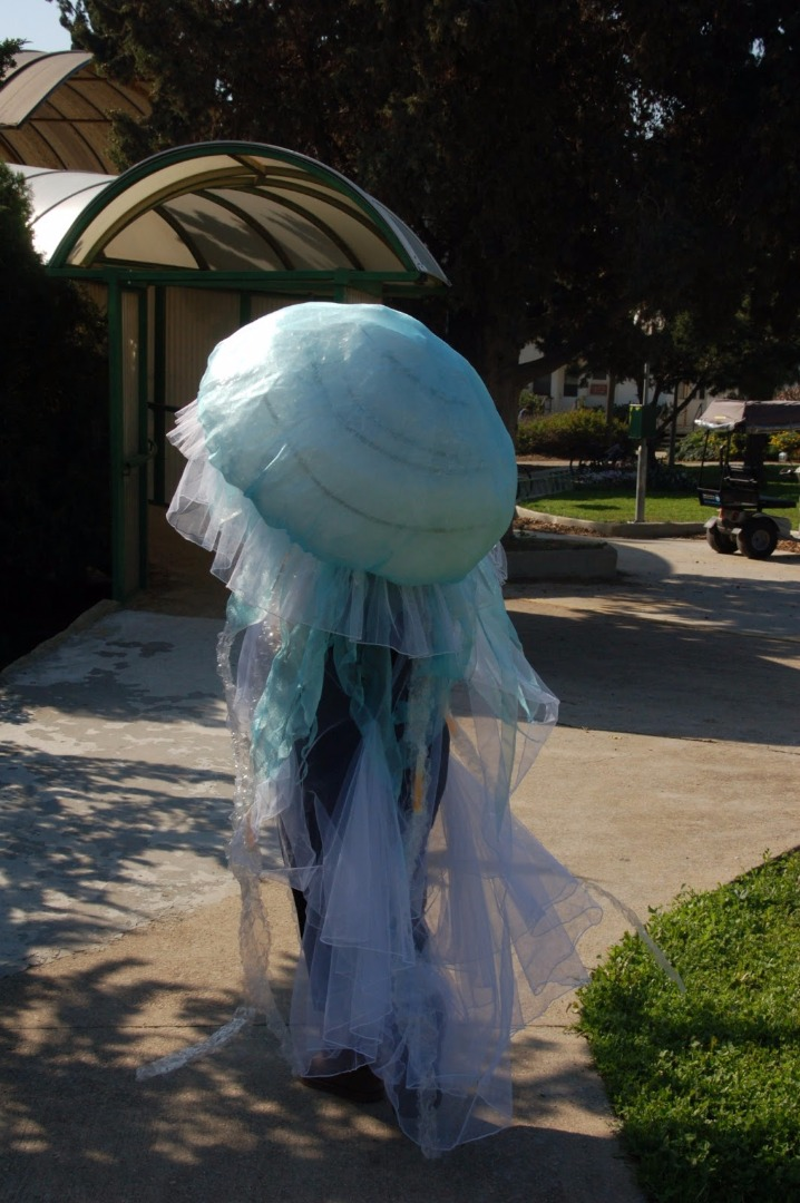 Picture of Jellyfish Costume DIY