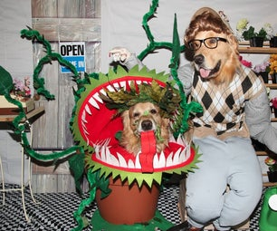 """Phoenix and Gryphon in """"Little Shop of Horrors"""""""