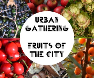 Urban Gathering - Fruits of the City