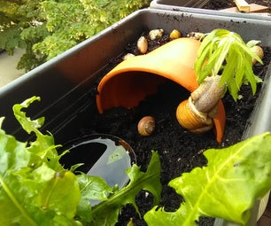 Turning a Flower Pot Into a Snail House