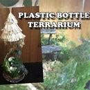 Plastic Bottle Terrarium