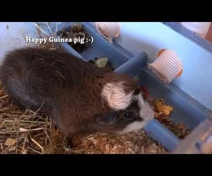 Arduino - Guinea Pig Automatic Food and Water Dispenser