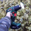 How to Make a Pruning Machine