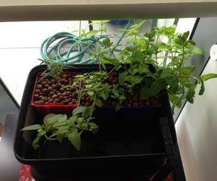 Mini Hydroponics Herb Garden V2.0