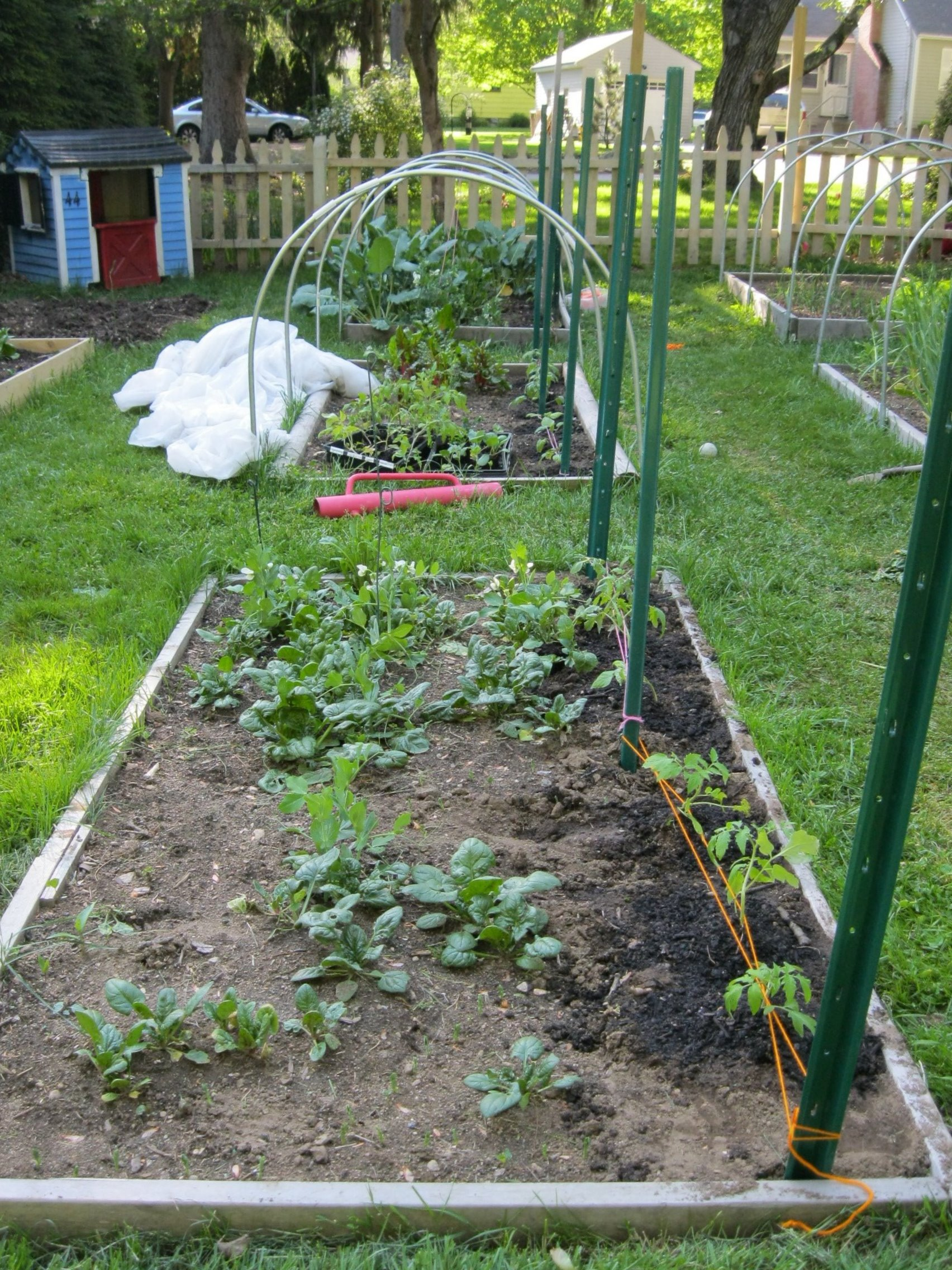 Picture of Spring and Summer Gardening.