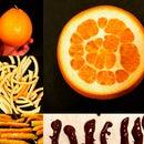 Chocolate Dipped Orange Peel - Orangette
