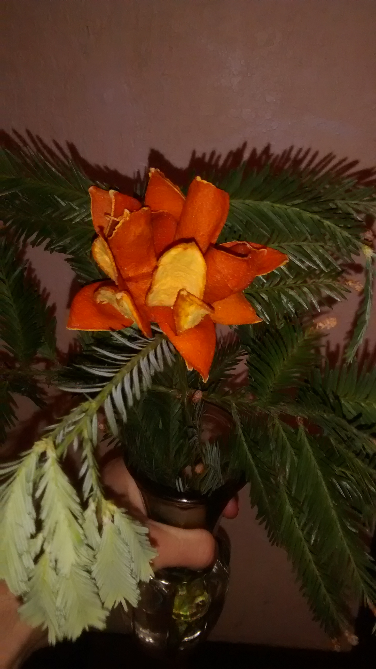 Picture of Evergreen Orange Flower