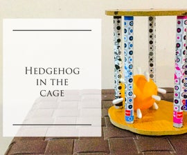 Hedgehog in the Cage!