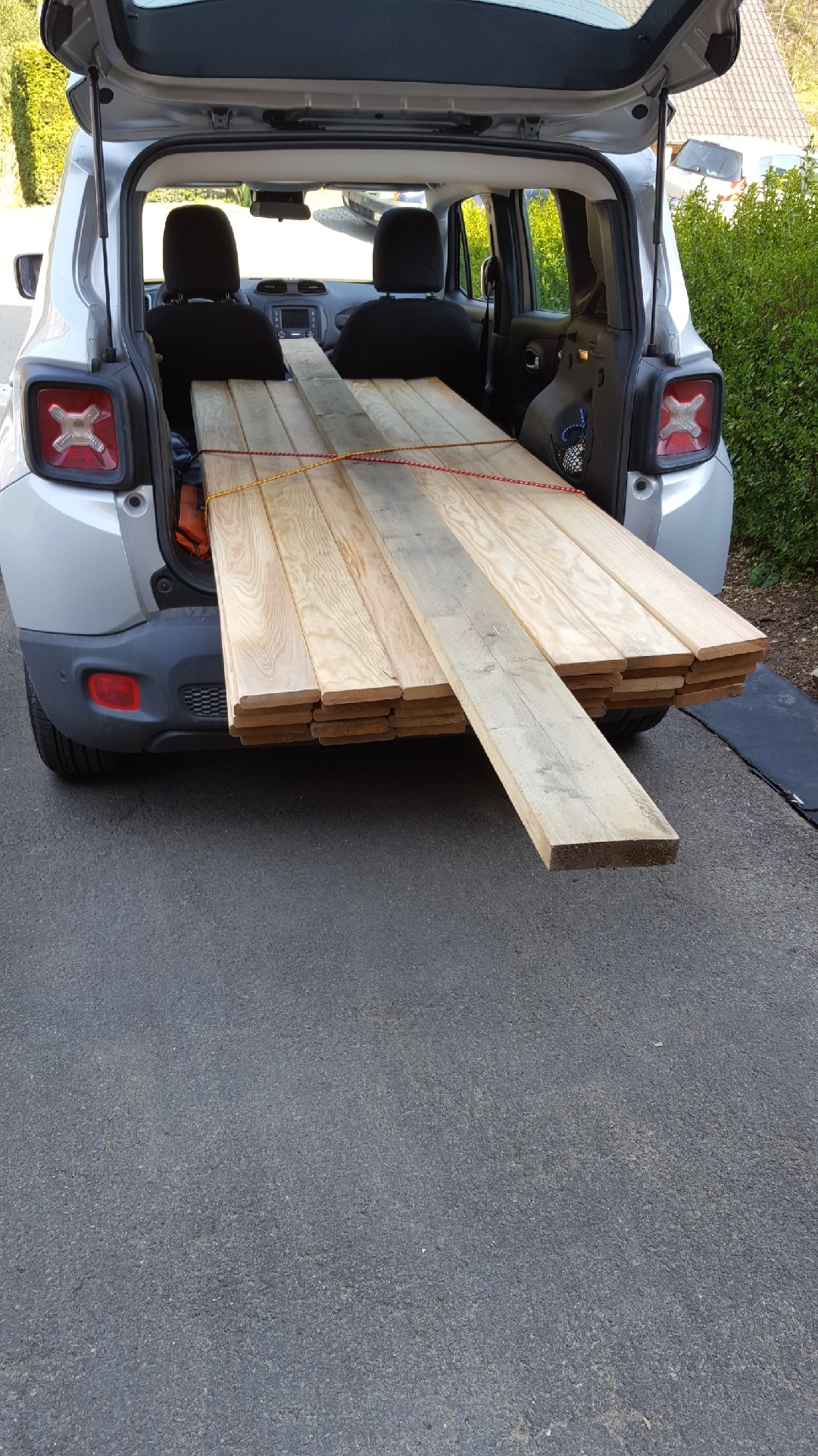 Picture of Find Your Wood and Cut It