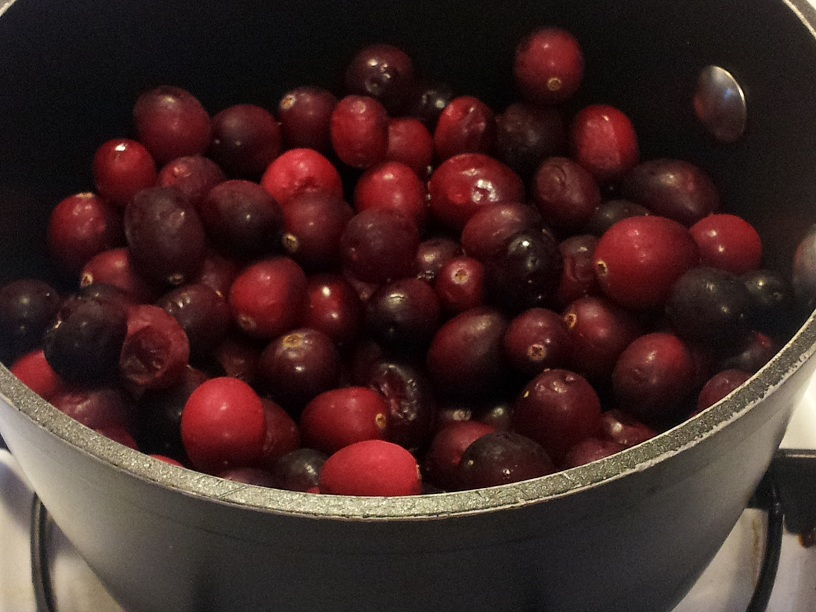 Picture of DIY Jellied Cranberry Sauce in a Can!