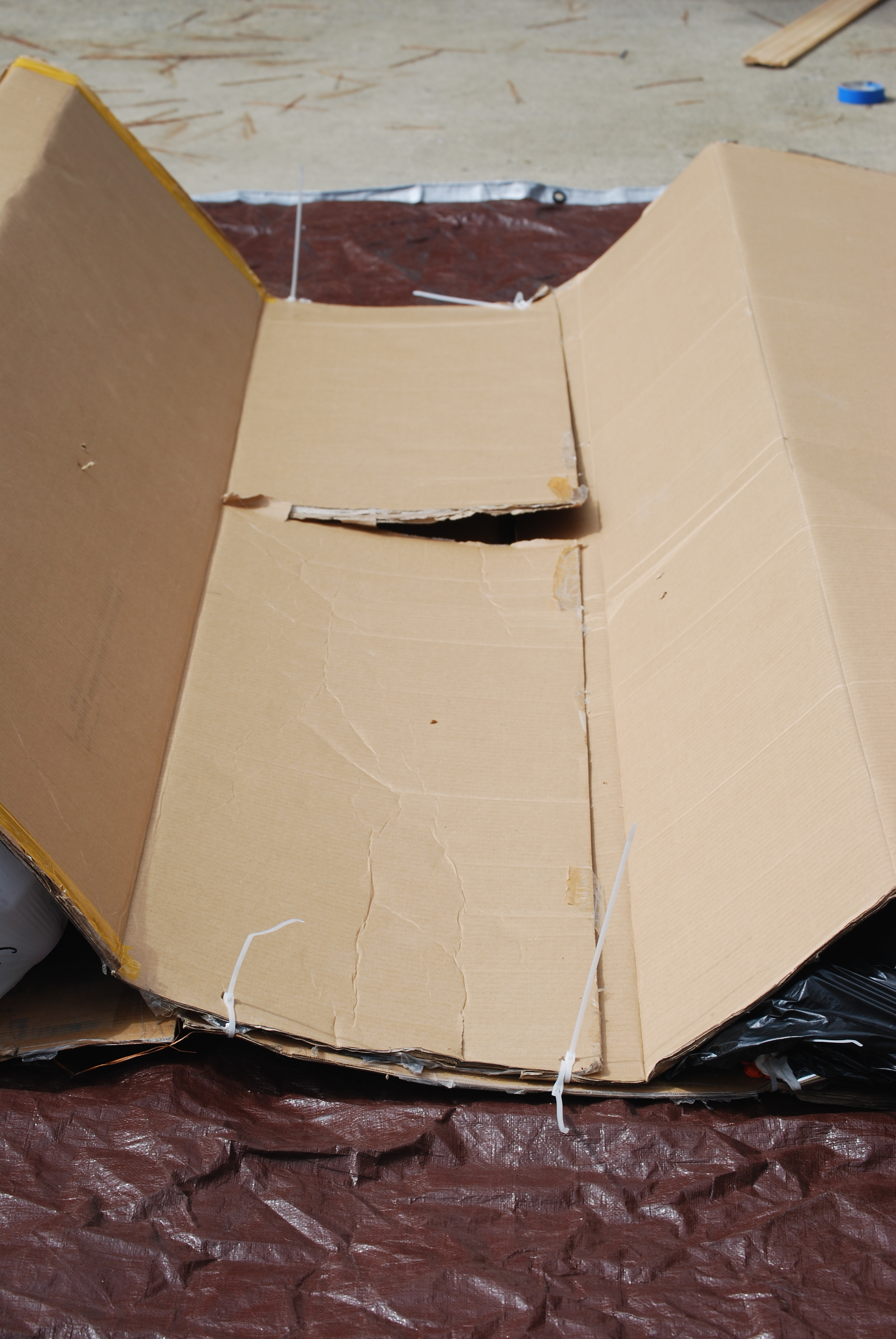 Picture of Shaping the Box