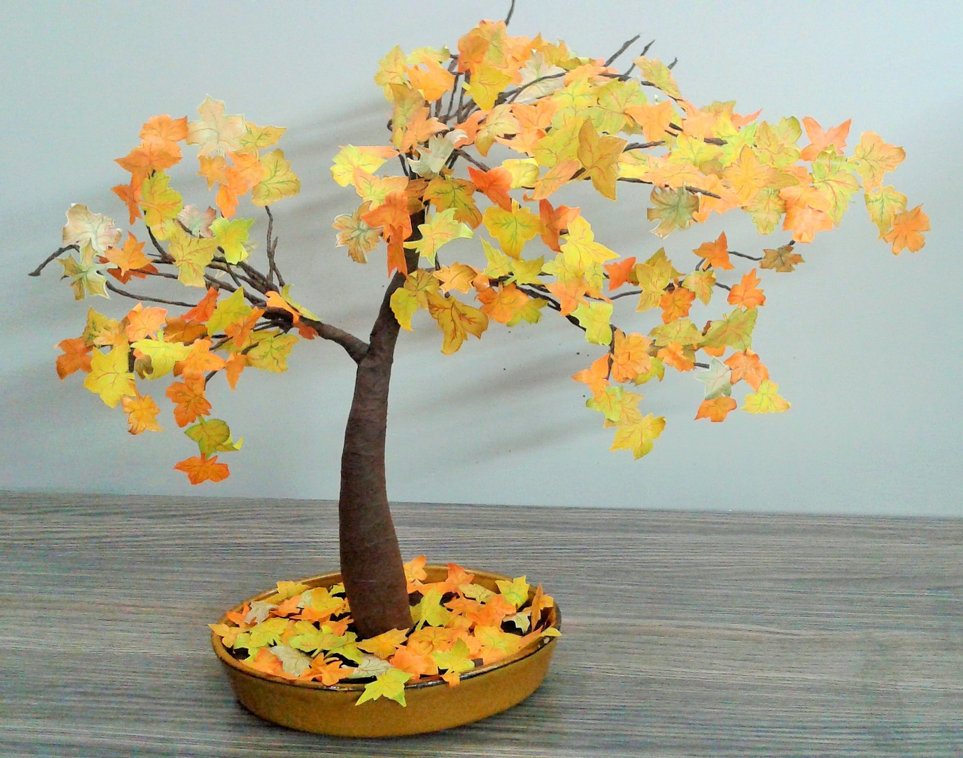 Picture of Autumn Tree