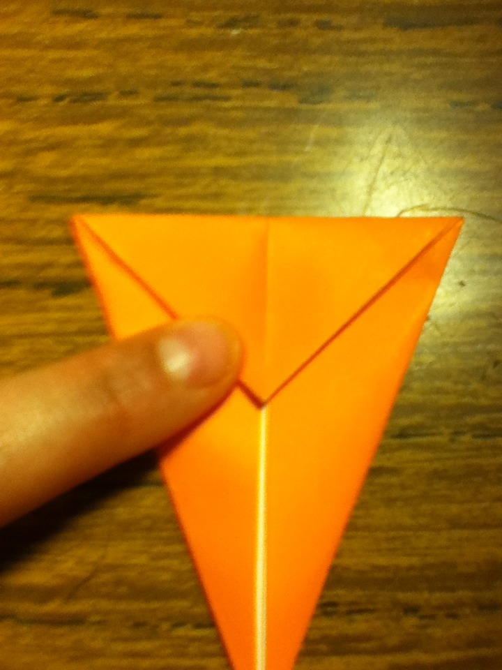 Picture of Fold Triangle on Top Down Like Shown Front and Back