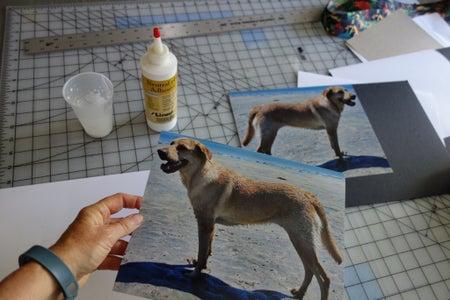 Glue Photos to Board