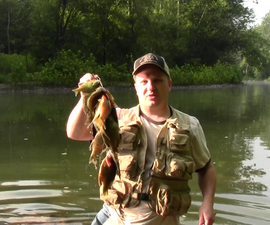 How to Catch Lots of Bluegill and Rock Bass