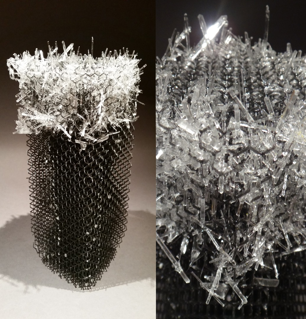 Picture of How to Grow Salt Crystals!