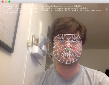 Decide What Data You Want to Collect About Your Face