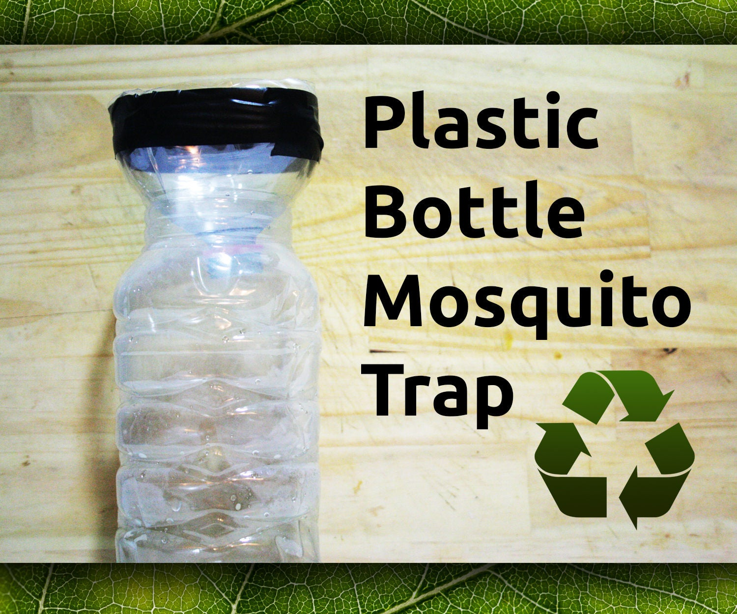 Plastic Bottle Mosquito Trap