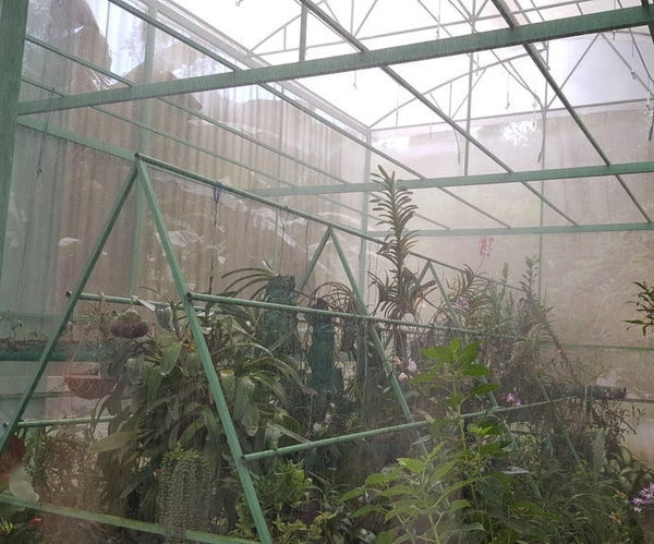 Make Your Own Greenhouse (Construct, Plant and Care)