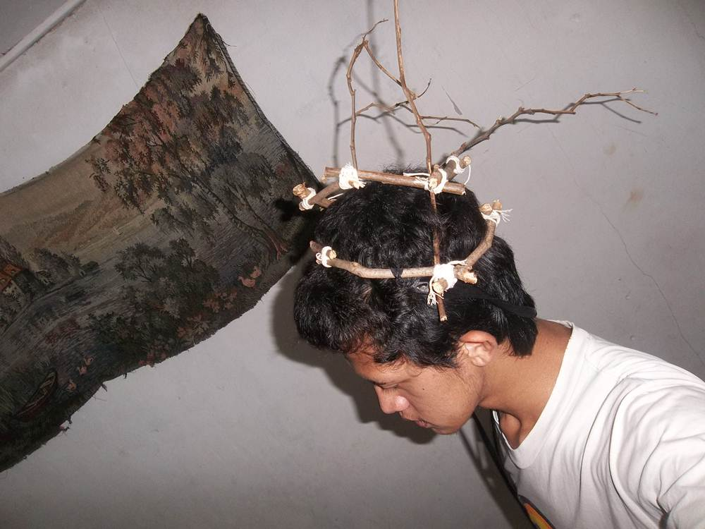 Picture of Branches Crown (Deer Horns)