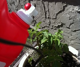 Recycled Laundry Detergent Watering Can